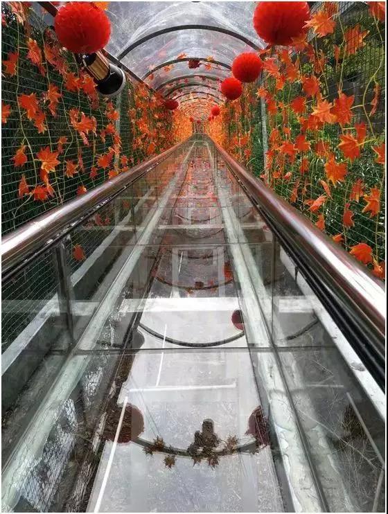越王山风景区位于河源市紫金县古竹镇的东江畔,面积约7.